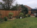 Featheredge fencing