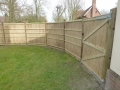 Reed panel fencing